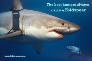 The best hunters always carry a Foldspear